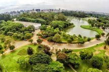 Parque do Ibirapuera - São Paulo