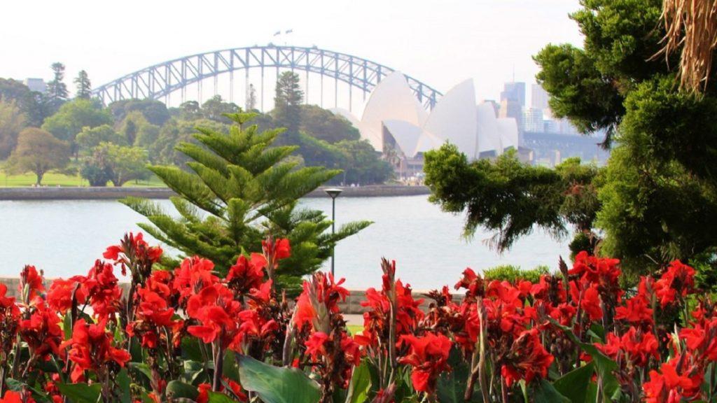 Jardim Botânico Real-sydney-