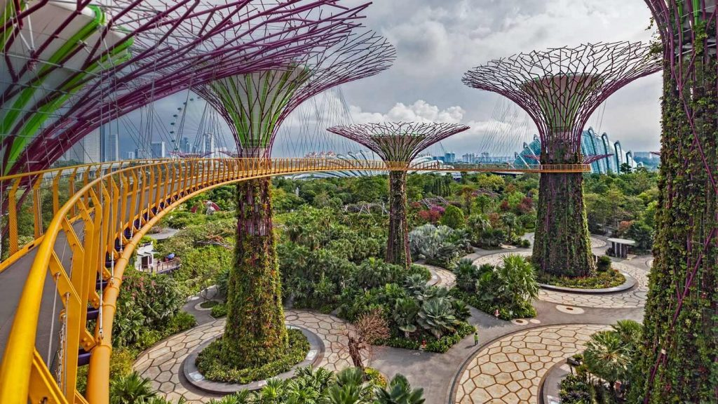 Singapore Bothanic Gardens